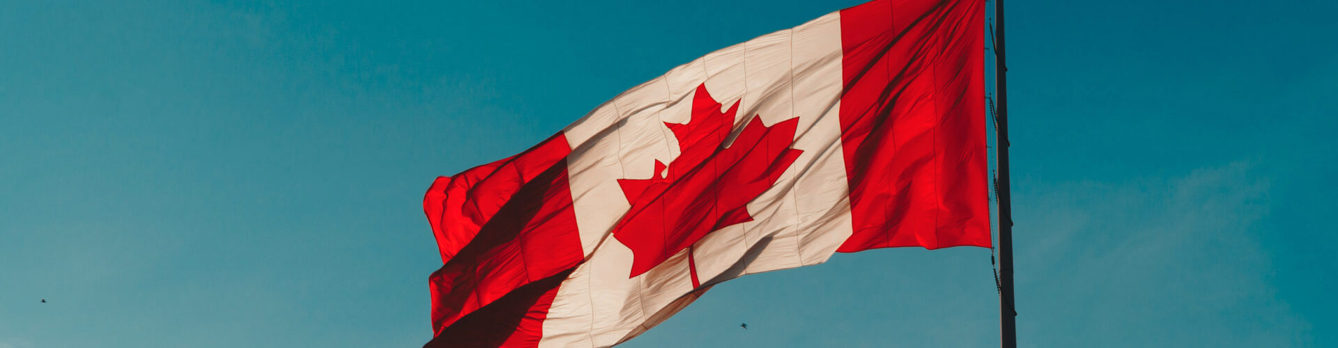 Close-up of Canadian flag blowing